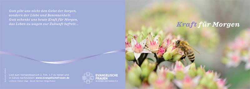Postkartenlayout_EF.indd